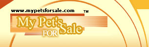 Pet animals in Missouri for sale including horses, birds, smaller animals, exotics